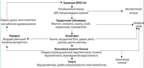 Классификация, основные симптомы